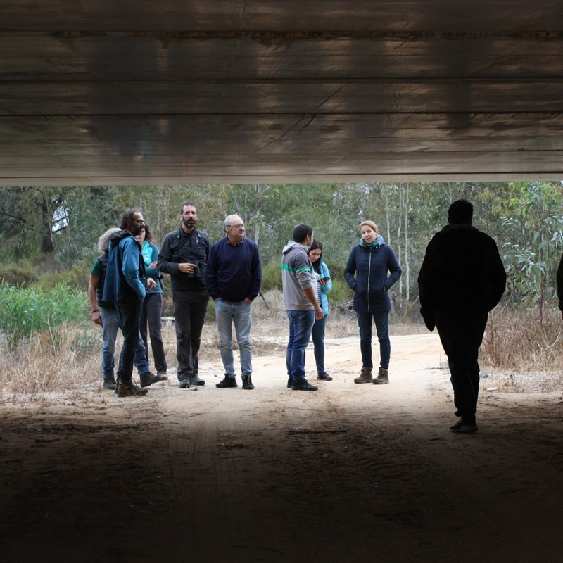 11-12 November: Field visit to the Spanish project site in Andalucia