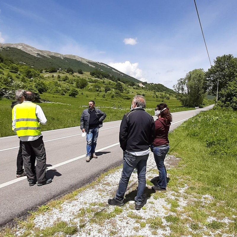 The field activities of the LIFE SAFE-CROSSING project started again after the lock-down!!