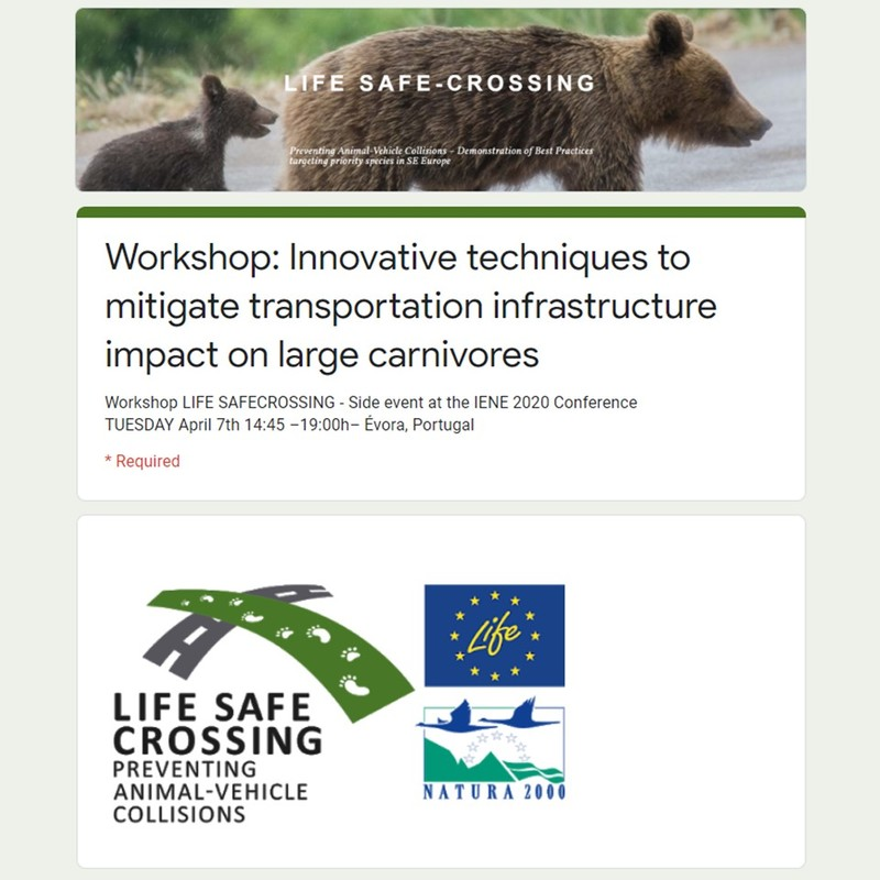 The LIFE SAFE-CROSSING workshop during the IENE 2020 conference was postponed to 12 January 2021 and will be held online! Register!!
